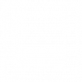 Commercial Buses