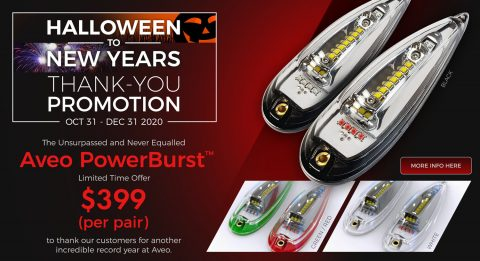 Halloween to New Years Thank-You Promotion